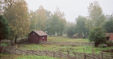 Stensjö By - Kodak Portra 160 | © mare.photo