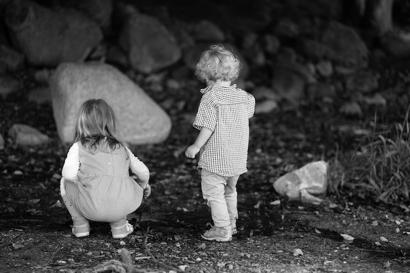 barnevernet, child protection servive norge