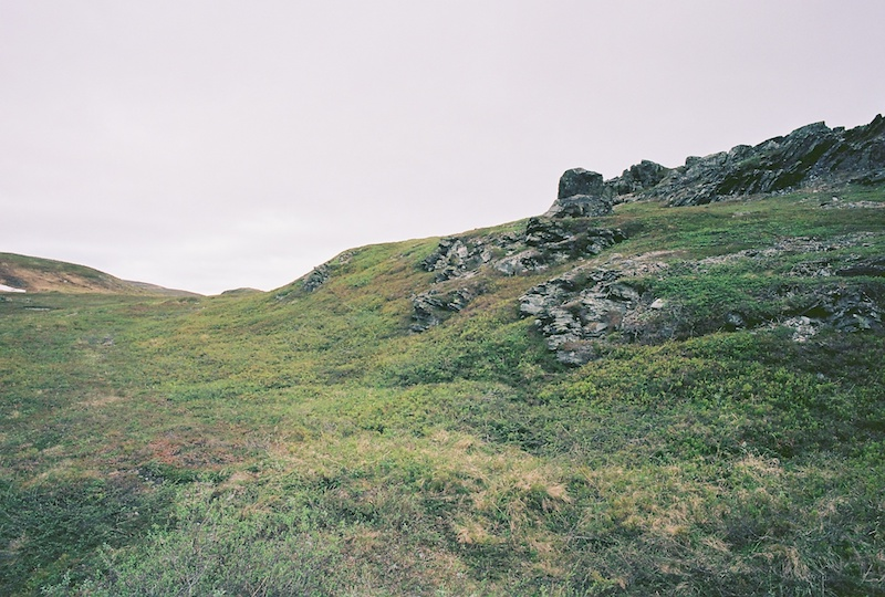 Tundra, Leica M Summilx 1.4 50 asph. | © mare.photo